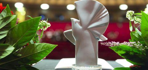 ANNE ISENSEE gewinnt mit MEGATRICK Goldene Taube im Deutschen Wettbewerb