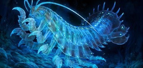 Job für Fischaffine 3 D Artists / Generalisten mit Unity-Erfahrung bei Reynard Films GbR